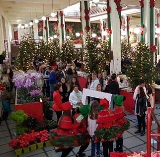 Natal na Praça arranca este domingo